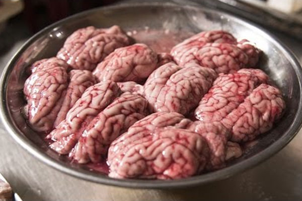 3. Monkey brain (consumed in China): Having the brains raw or cooked can cause transmissible encephalopathies, a nervous disorder.