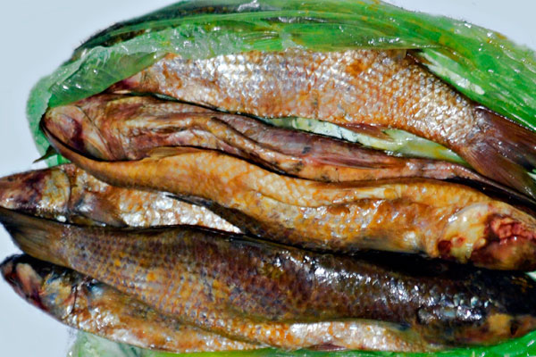 4. Fesikh (consumed in Egypt): It is a fish delicacy which is a spring festival food prepared by drying them under the sun and fermenting in salt. It can cause severe food poisoning.