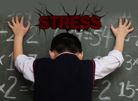Stress Relievers in the course of assessment