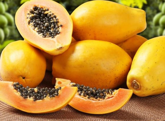 Papa`ya' or Papa`no'! Is Papaya A Friend Or Is It a Foe!