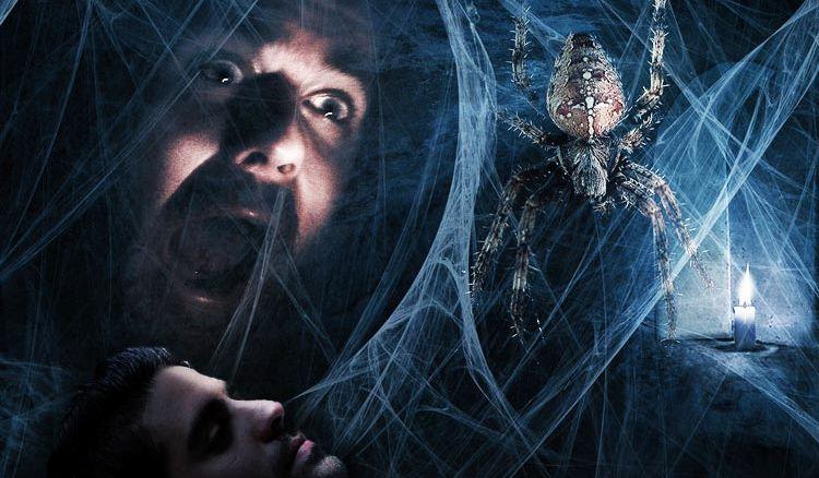 Five Ways Of Getting Rid Of Arachnophobia