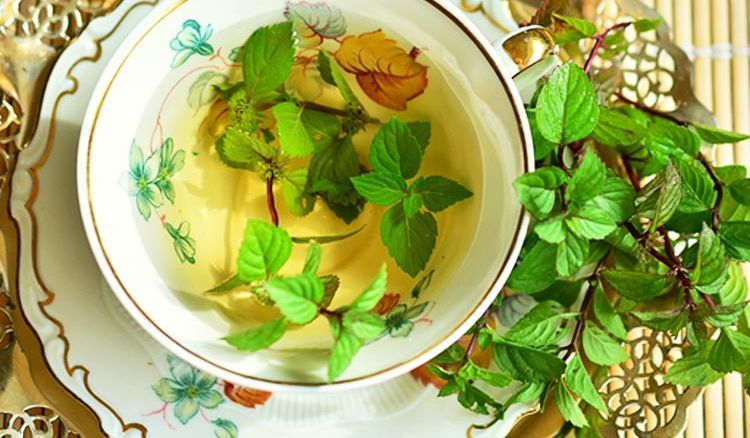 Peppermint Tea: The Refreshing Breed