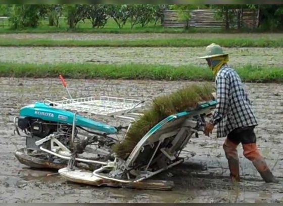 Paddy Transplanting Machines: An Aid to Farmers