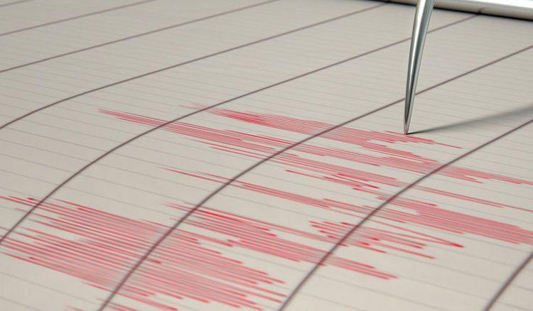 Earthquake hits Assam, Tremors felt in West Bengal