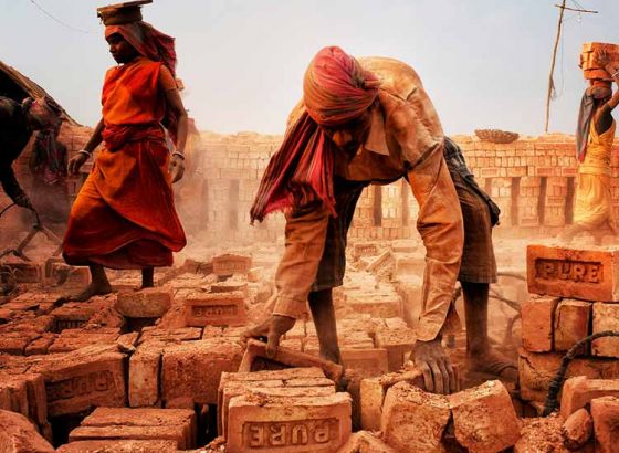 State government takes initiative for brick factory development