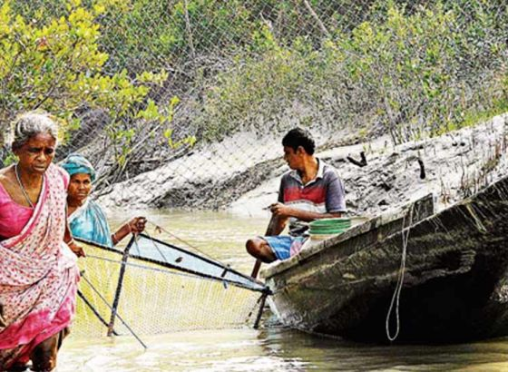 Boat license for fishermen in Sundarbans