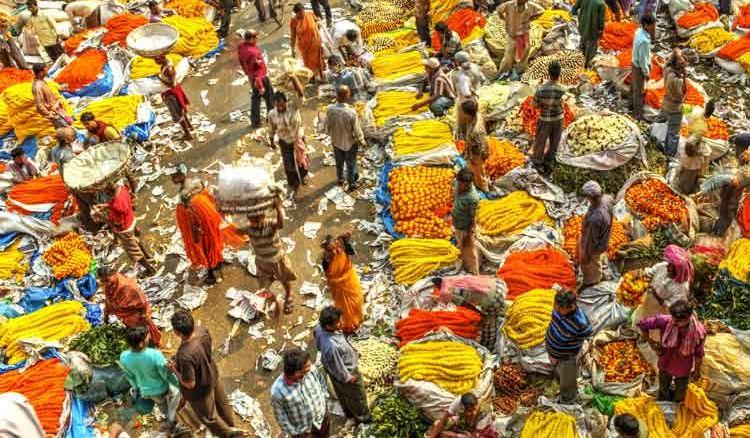 The Garden Of Eden In West Bengal