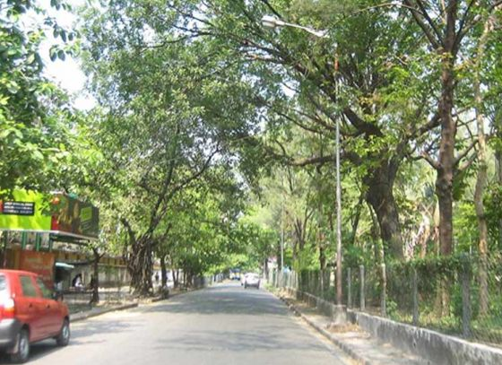 Sprinklers to be installed in Southern Avenue by KMC