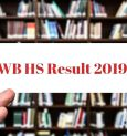 HS '19 results are out