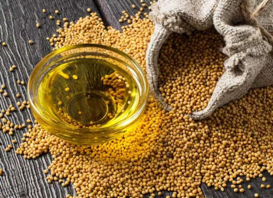 The Healing Touch of Mustard Oil