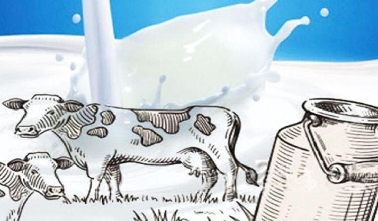 Mother Dairy's milk fortification project