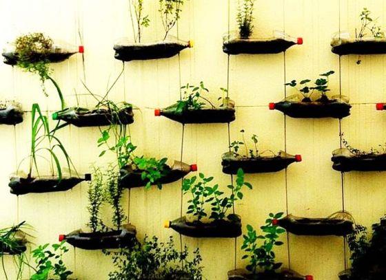 Conserve Nature Mohanta's Way