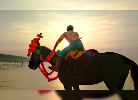 Horse riding to be banned on Digha beach