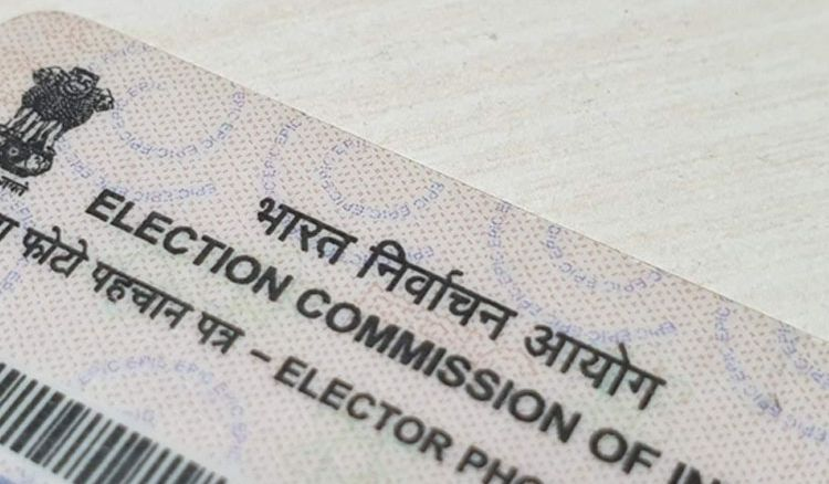 Black & white voter cards to become colorful
