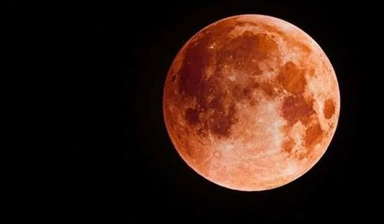 2020's first Lunar eclipse