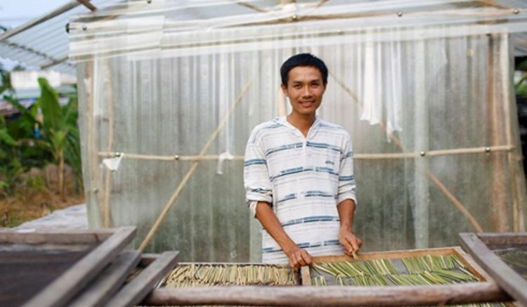 Straws made from wild grass to the rescue!
