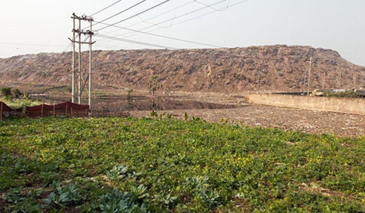KMC to empty Dhapa landfill site
